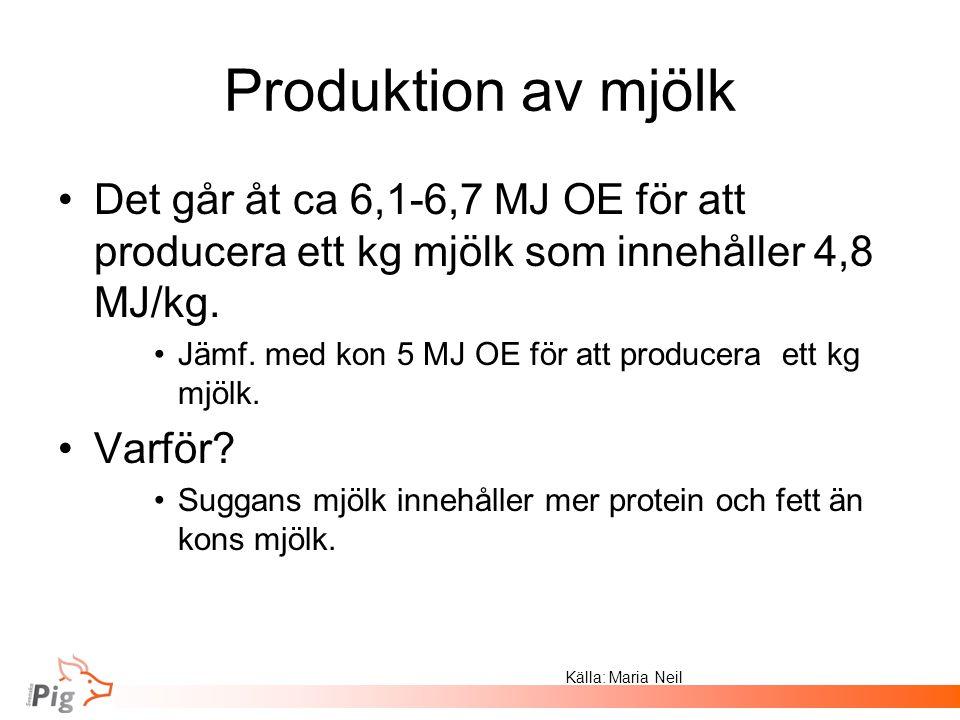 Produktion av mjölk Det går åt ca 6,1-6,7 MJ OE för att producera ett kg mjölk som innehåller 4,8 MJ/kg.
