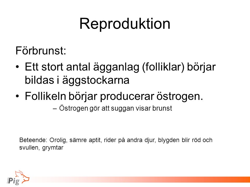 Reproduktion Förbrunst:
