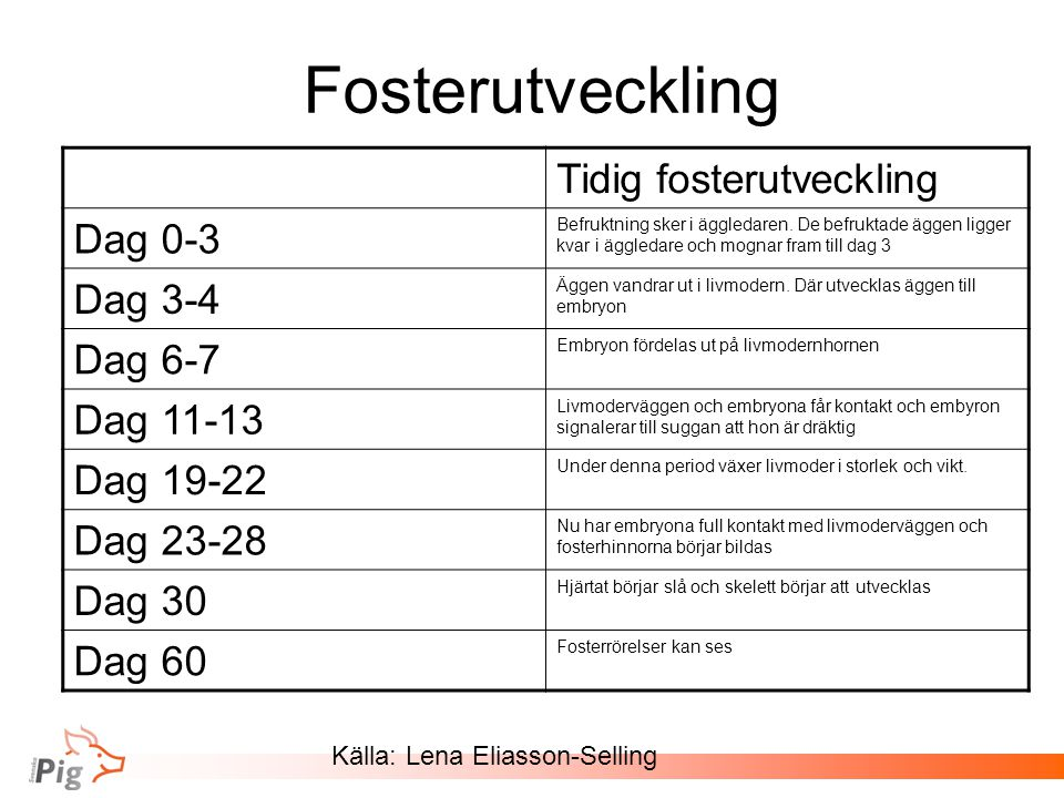 Källa: Lena Eliasson-Selling