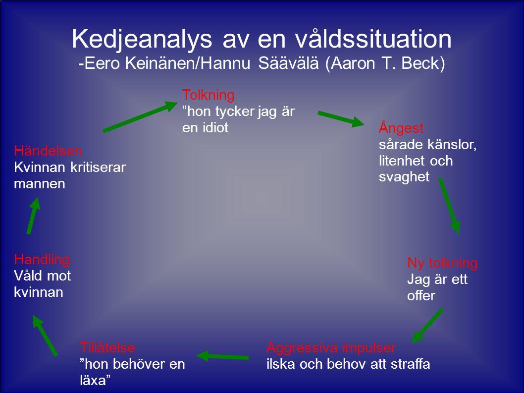 Kedjeanalys av en våldssituation -Eero Keinänen/Hannu Säävälä (Aaron T