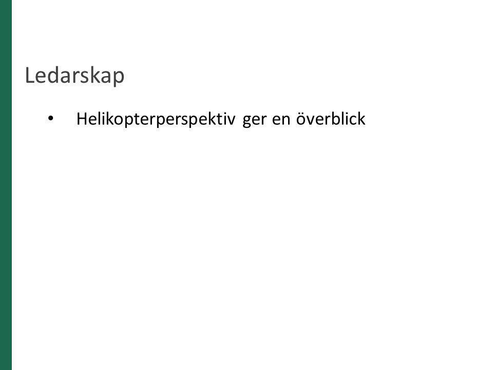Ledarskap Helikopterperspektiv ger en överblick