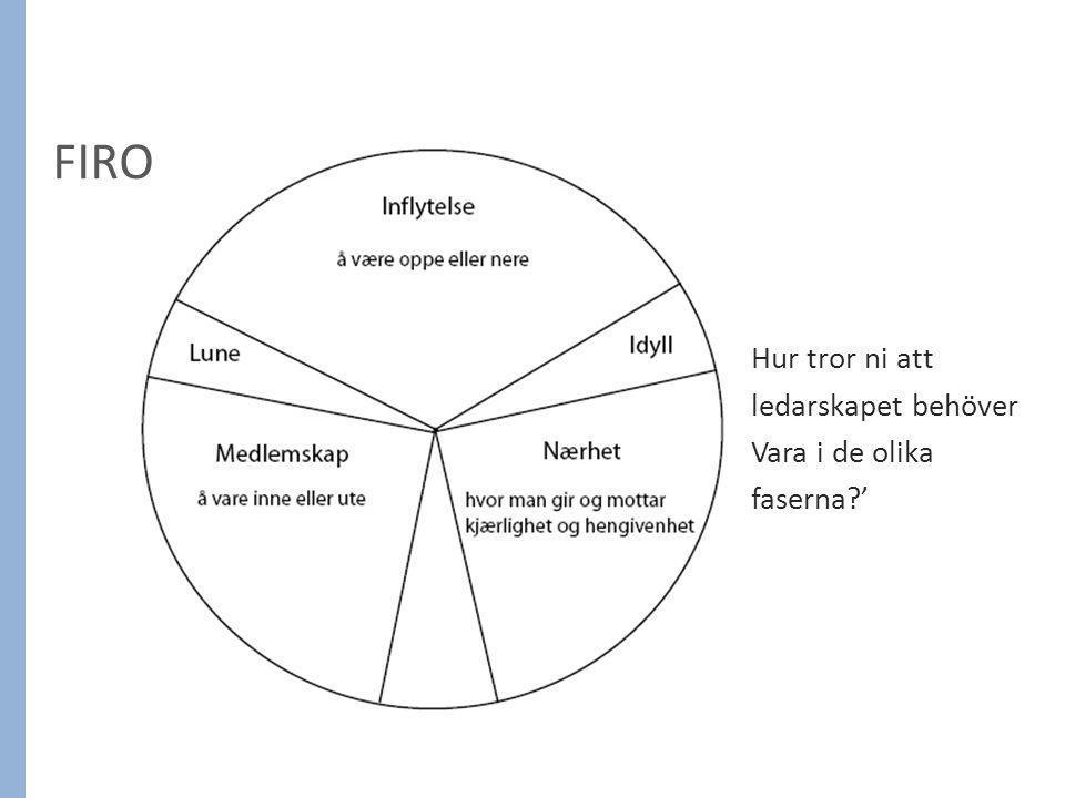 FIRO Hur tror ni att ledarskapet behöver Vara i de olika faserna '