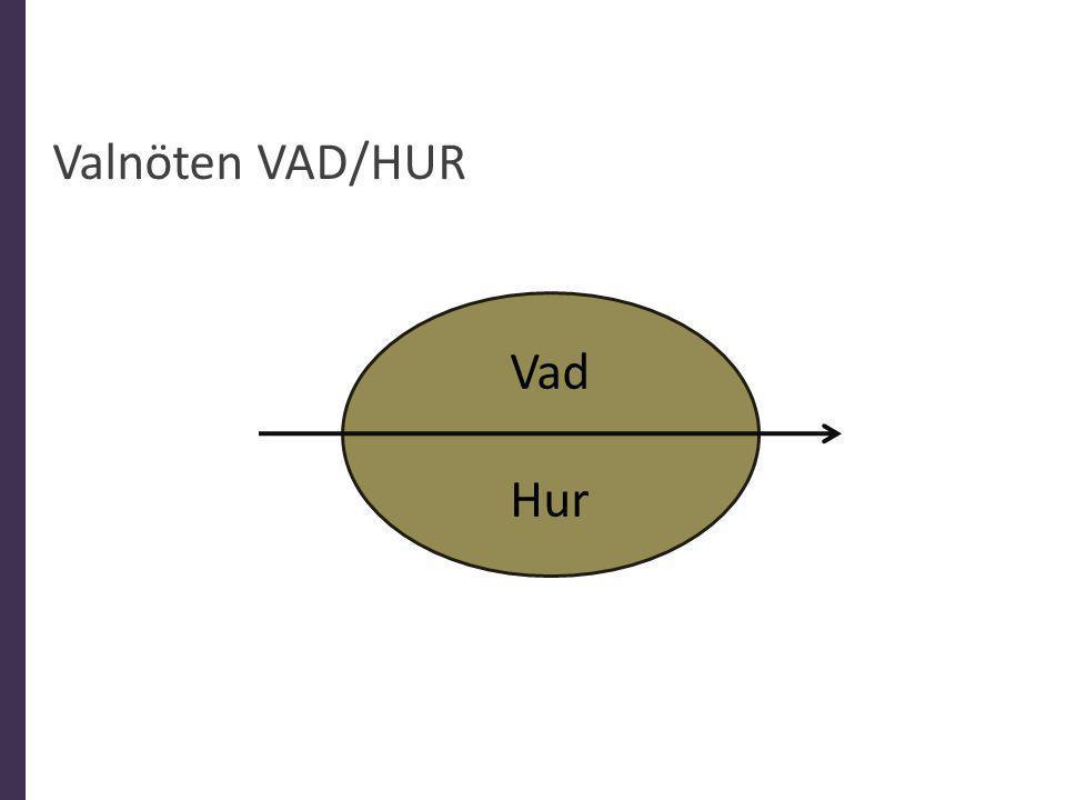 Valnöten VAD/HUR Vad Hur Elin
