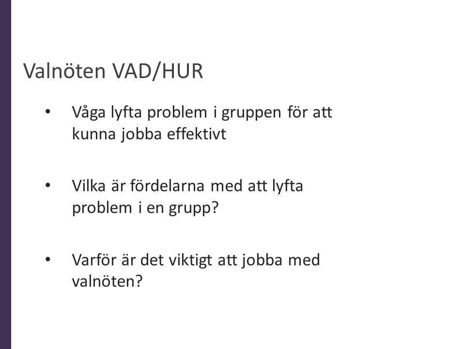 Valnöten VAD/HUR Våga lyfta problem i gruppen för att kunna jobba effektivt. Vilka är fördelarna med att lyfta problem i en grupp