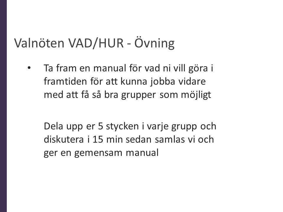 Valnöten VAD/HUR - Övning