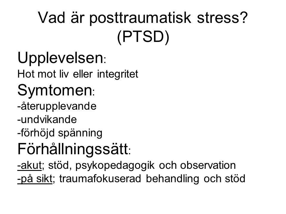 Vad är posttraumatisk stress (PTSD)