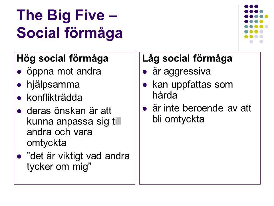 The Big Five – Social förmåga