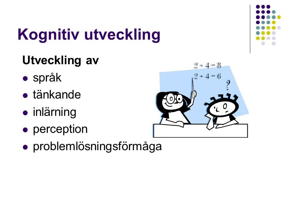 Kognitiv utveckling Utveckling av språk tänkande inlärning perception