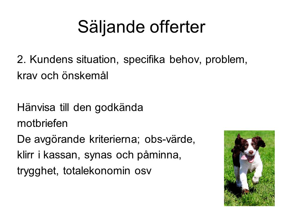 Säljande offerter 2. Kundens situation, specifika behov, problem,