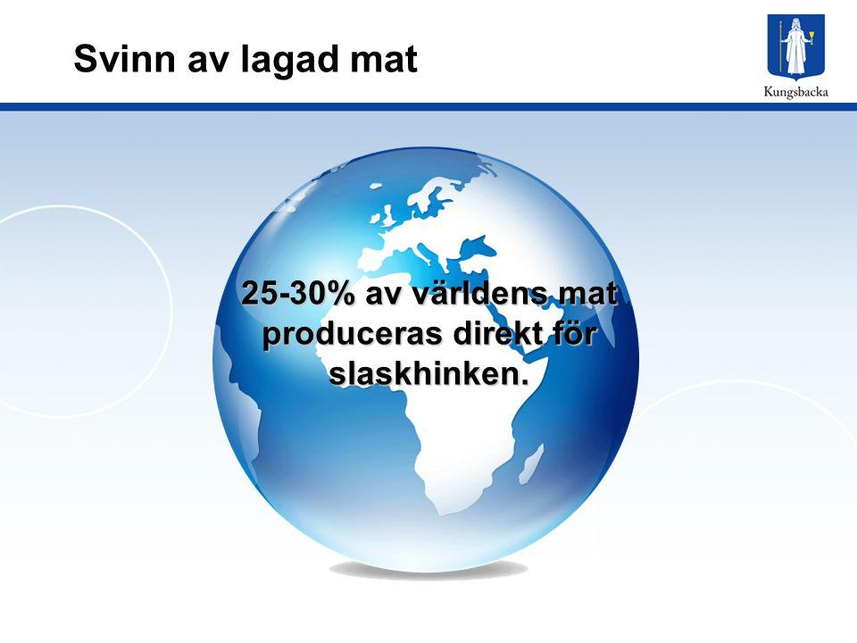 25-30% av världens mat produceras direkt för slaskhinken.