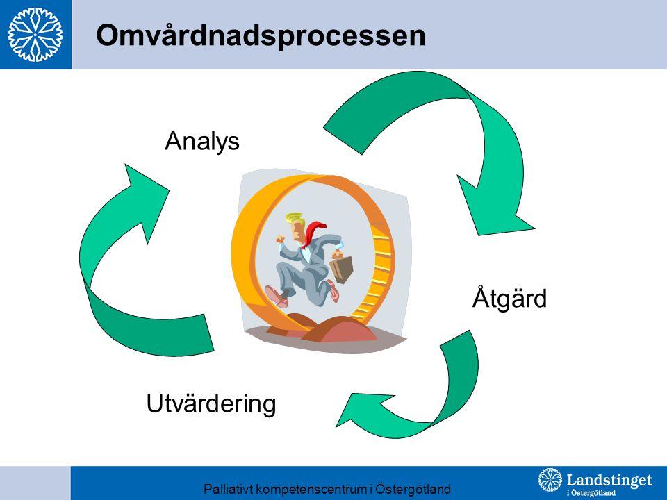 Omvårdnadsprocessen Analys Åtgärd Utvärdering