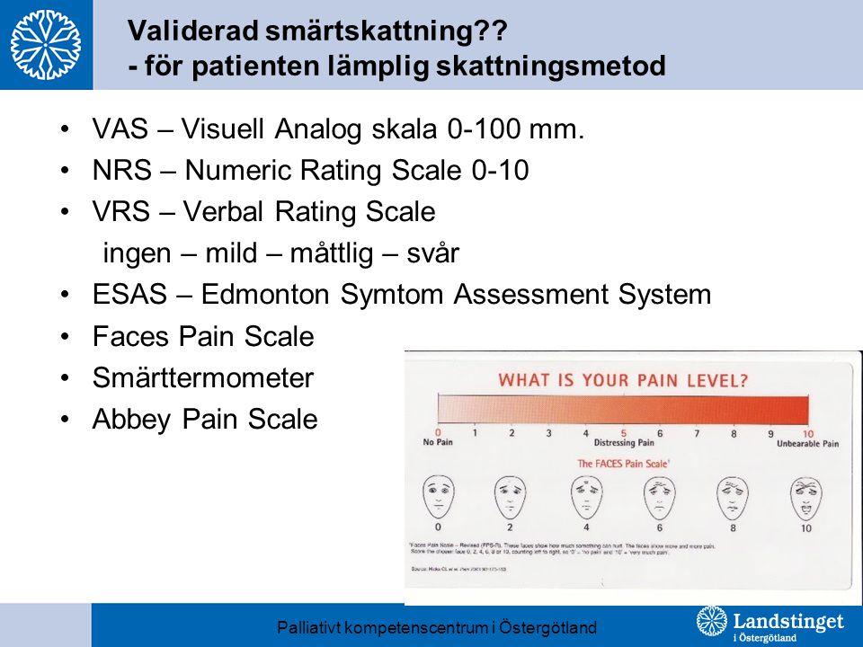 Validerad smärtskattning - för patienten lämplig skattningsmetod