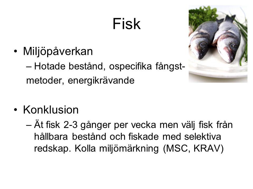 Fisk Miljöpåverkan Konklusion Hotade bestånd, ospecifika fångst-