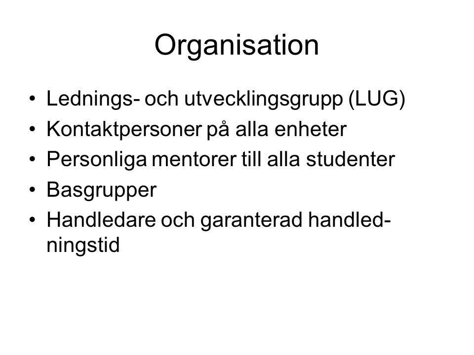 Organisation Lednings- och utvecklingsgrupp (LUG)