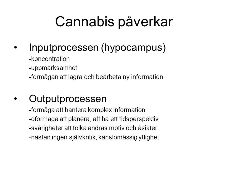 Cannabis påverkar Inputprocessen (hypocampus) Outputprocessen