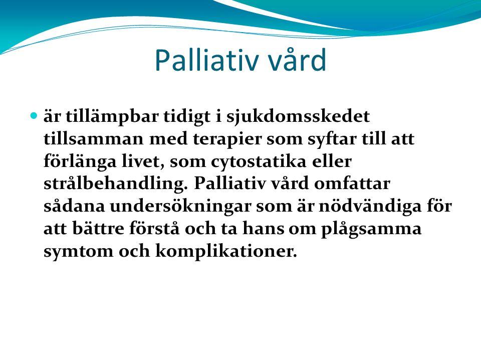 3131 Palliativ vård.