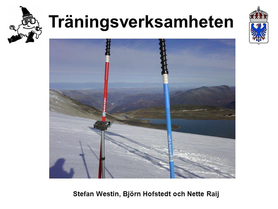 Träningsverksamheten Stefan Westin, Björn Hofstedt och Nette Raij