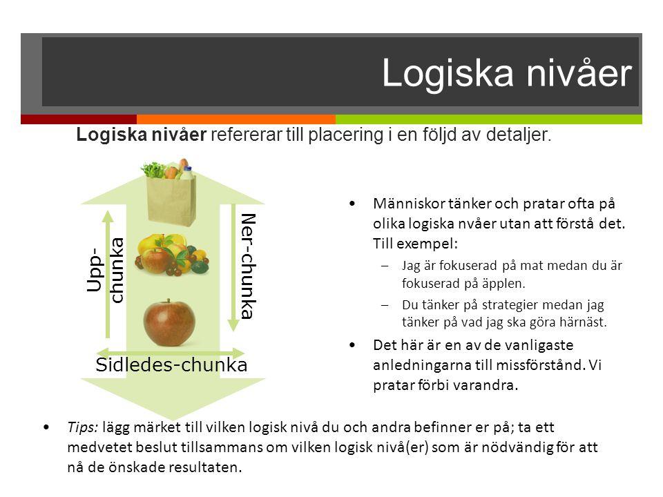 Logiska nivåer Logiska nivåer refererar till placering i en följd av detaljer.