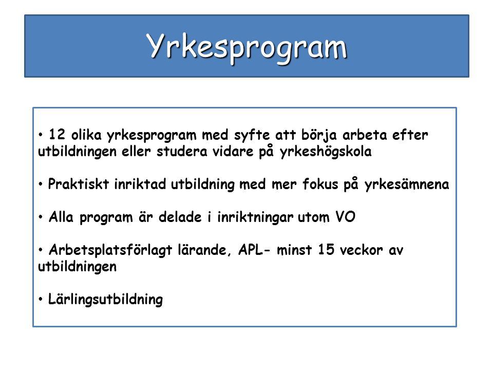 Yrkesprogram 12 olika yrkesprogram med syfte att börja arbeta efter utbildningen eller studera vidare på yrkeshögskola.