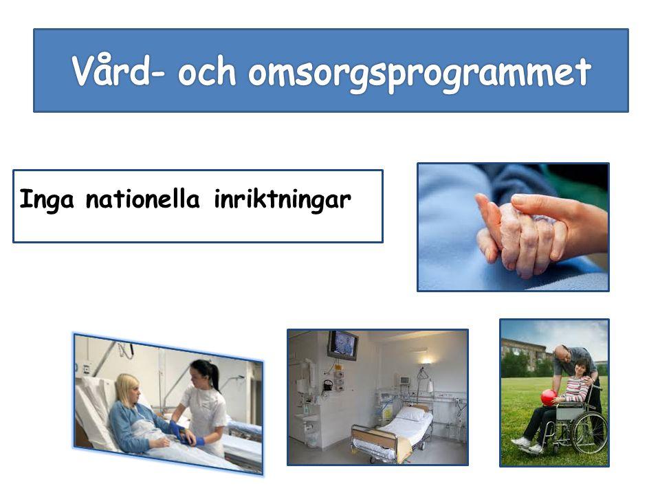 Vård- och omsorgsprogrammet