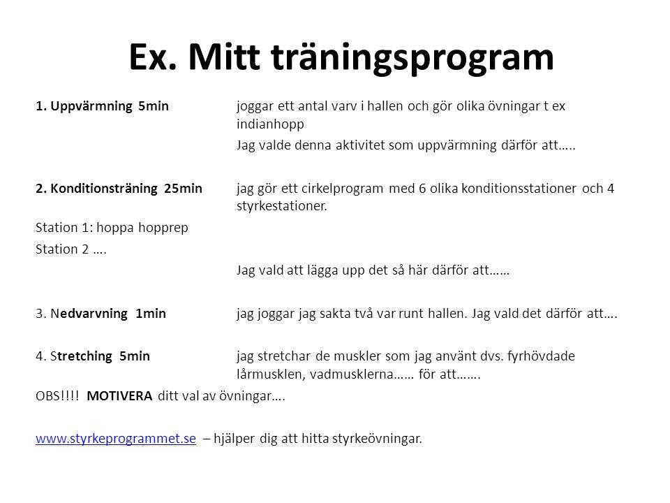 Ex. Mitt träningsprogram