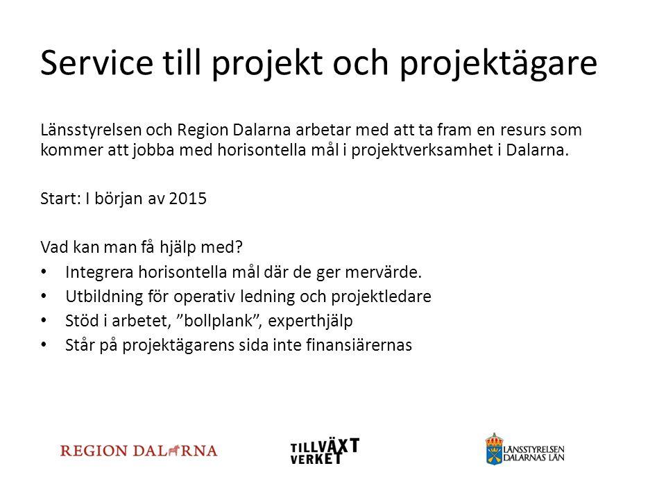 Service till projekt och projektägare