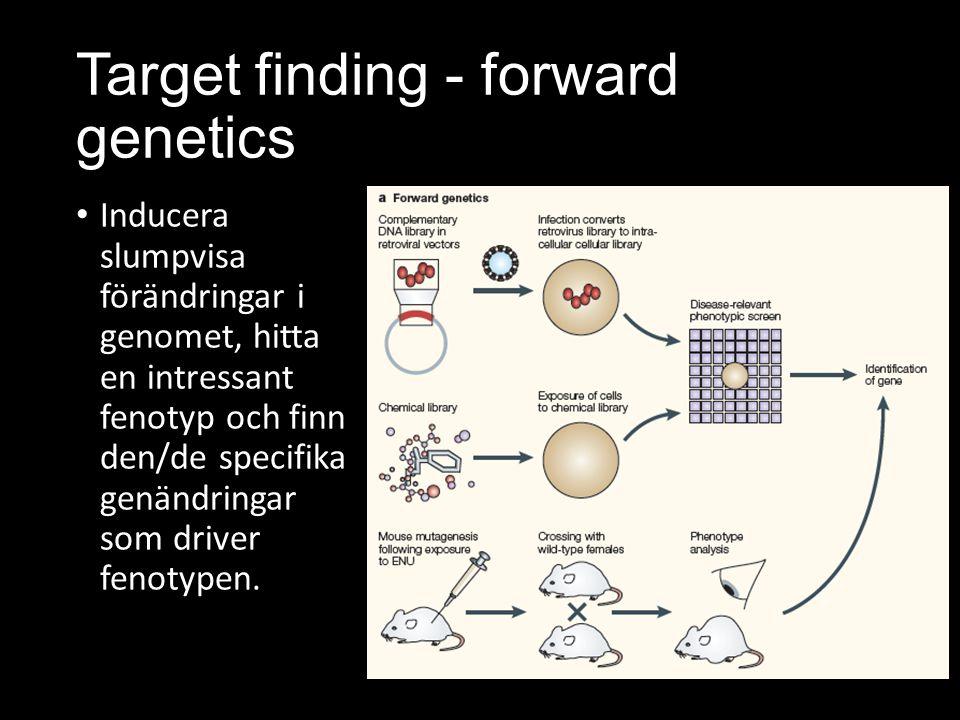 Target finding - forward genetics