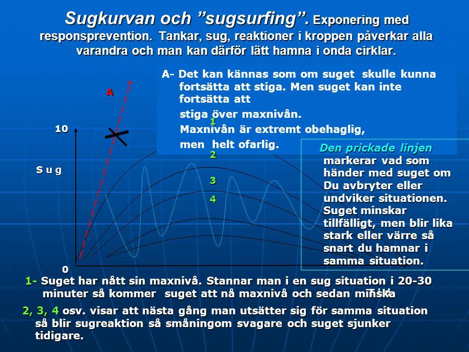 Sugkurvan och sugsurfing . Exponering med responsprevention