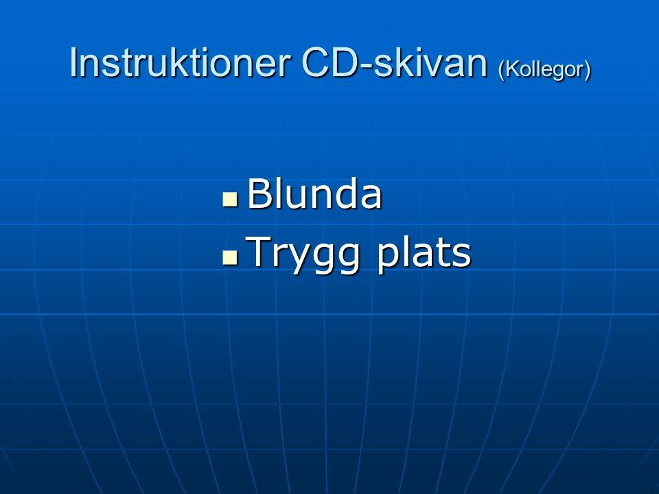 Instruktioner CD-skivan (Kollegor)