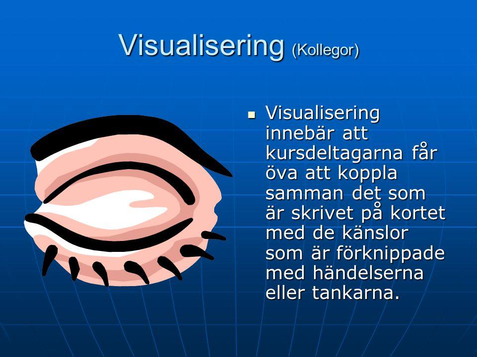 Visualisering (Kollegor)