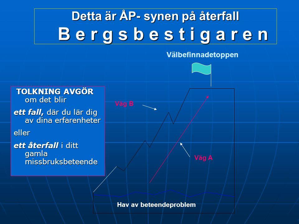 Detta är ÅP- synen på återfall B e r g s b e s t i g a r e n