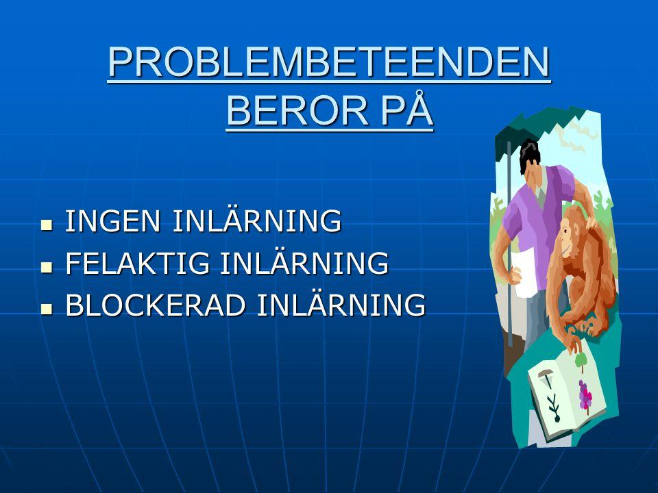 PROBLEMBETEENDEN BEROR PÅ