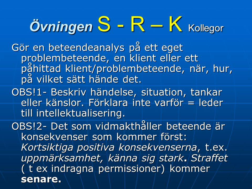 Övningen S - R – K Kollegor