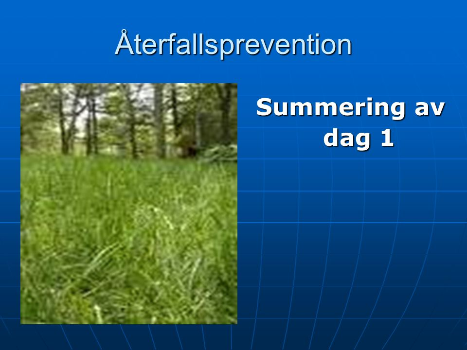 Återfallsprevention Summering av dag 1