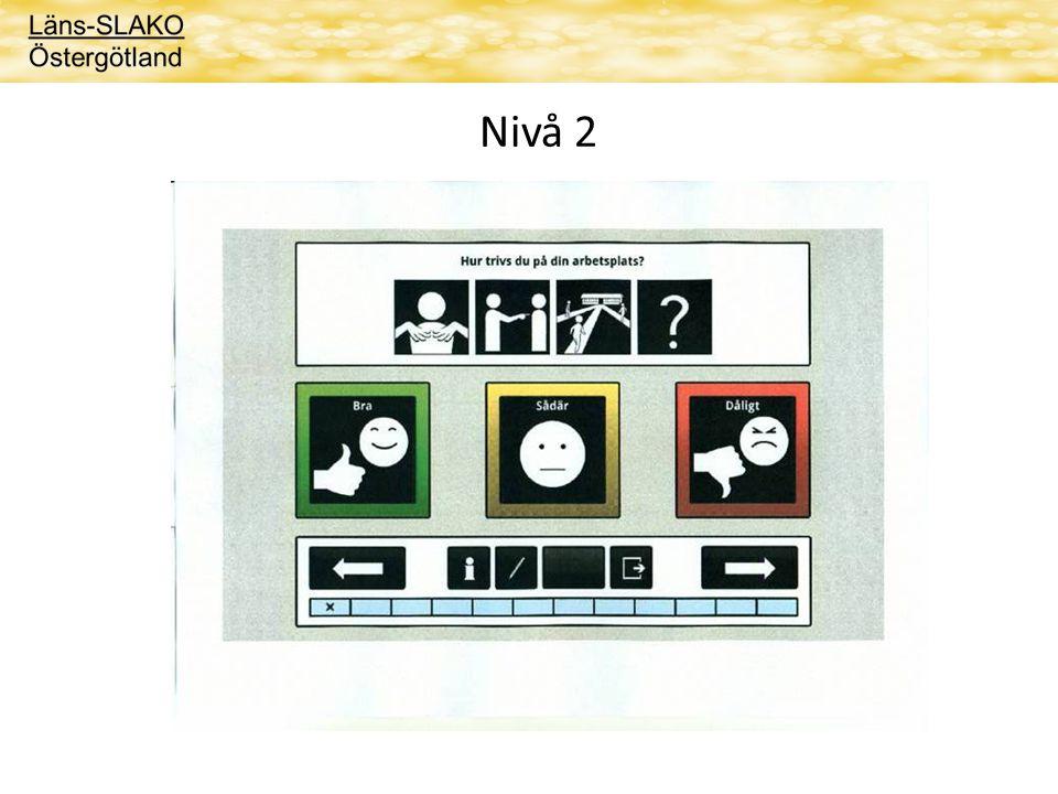 Nivå 2