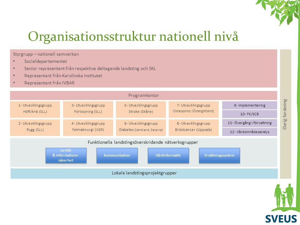 Organisationsstruktur nationell nivå