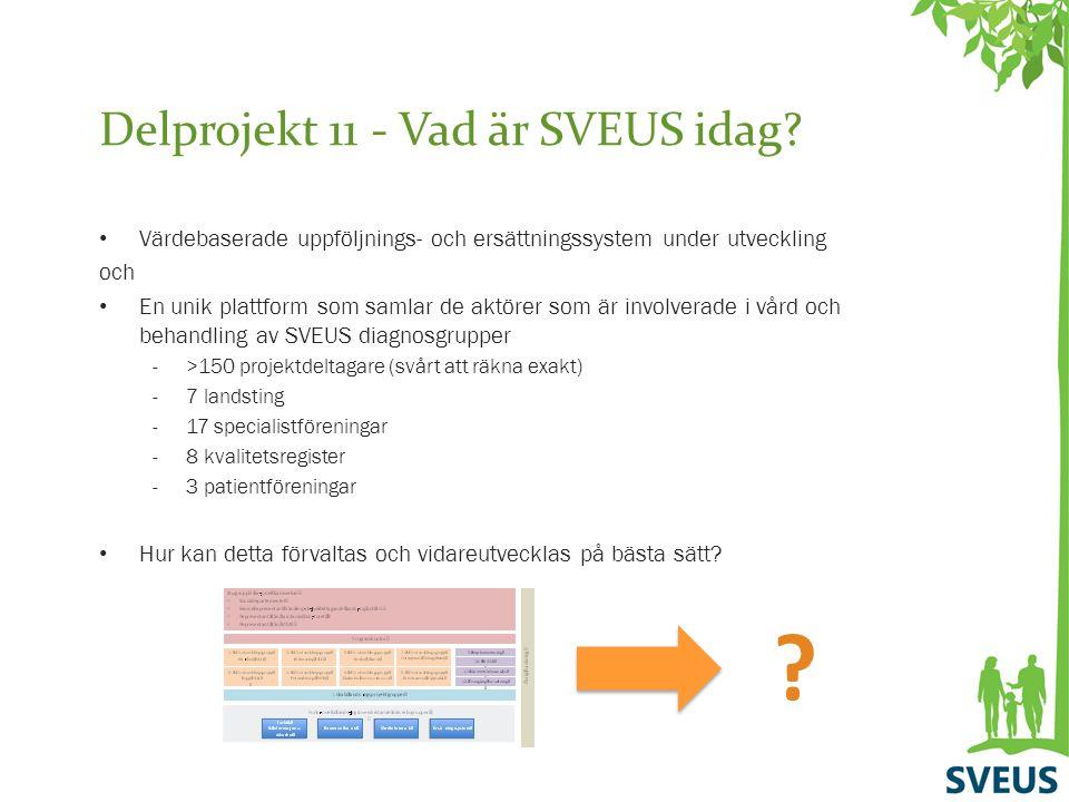Delprojekt 11 - Vad är SVEUS idag