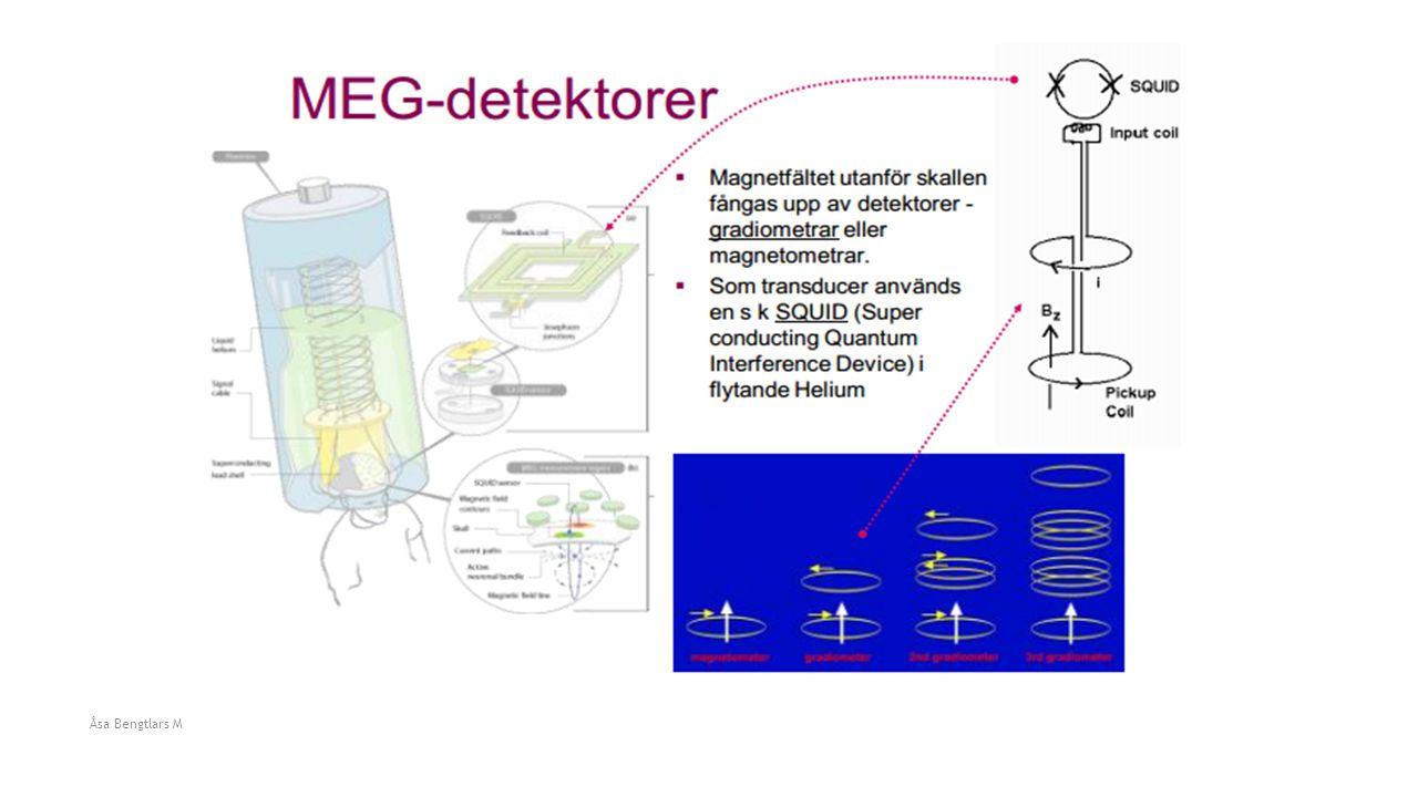Åsa Bengtlars Medicinska bilder HL1002