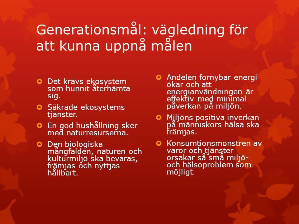 Generationsmål: vägledning för att kunna uppnå målen