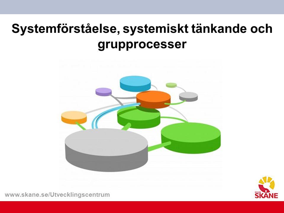 Systemförståelse, systemiskt tänkande och grupprocesser