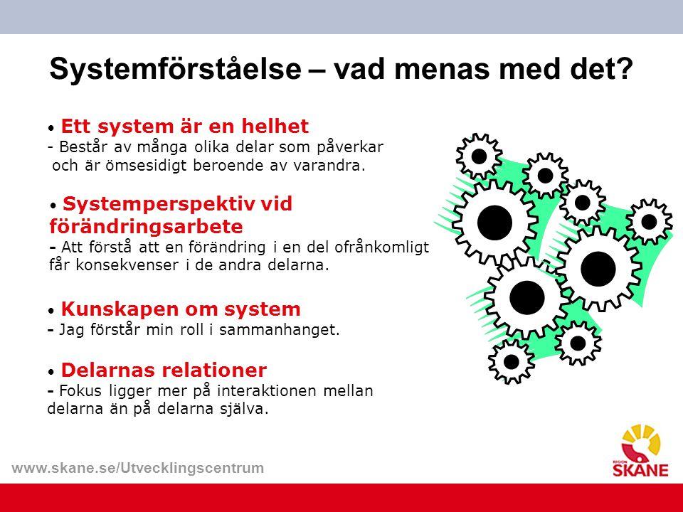Systemförståelse – vad menas med det