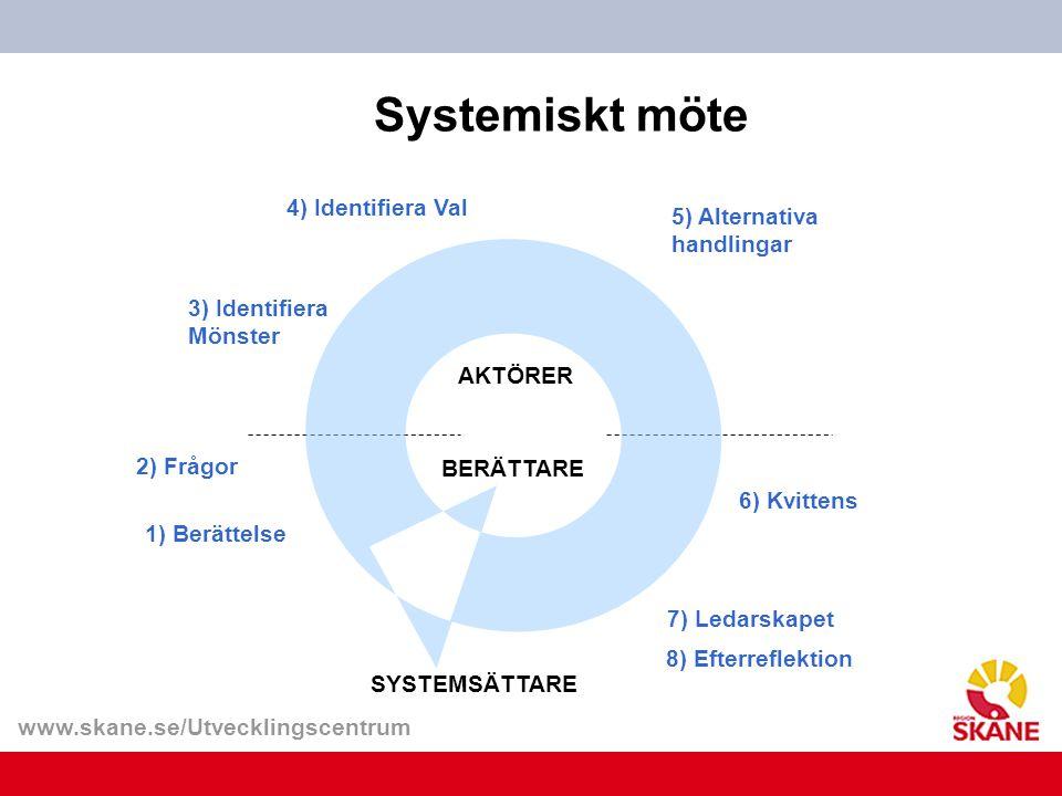 Systemiskt möte 4) Identifiera Val 5) Alternativa handlingar