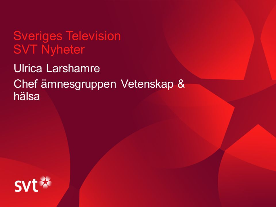 Sveriges Television SVT Nyheter