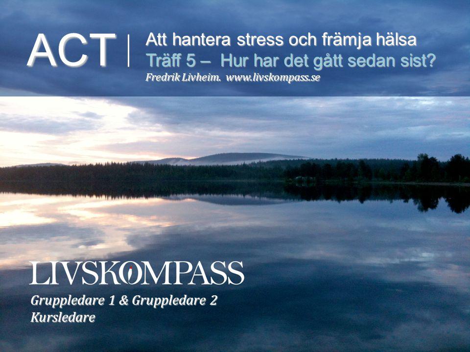ACT Att hantera stress och främja hälsa