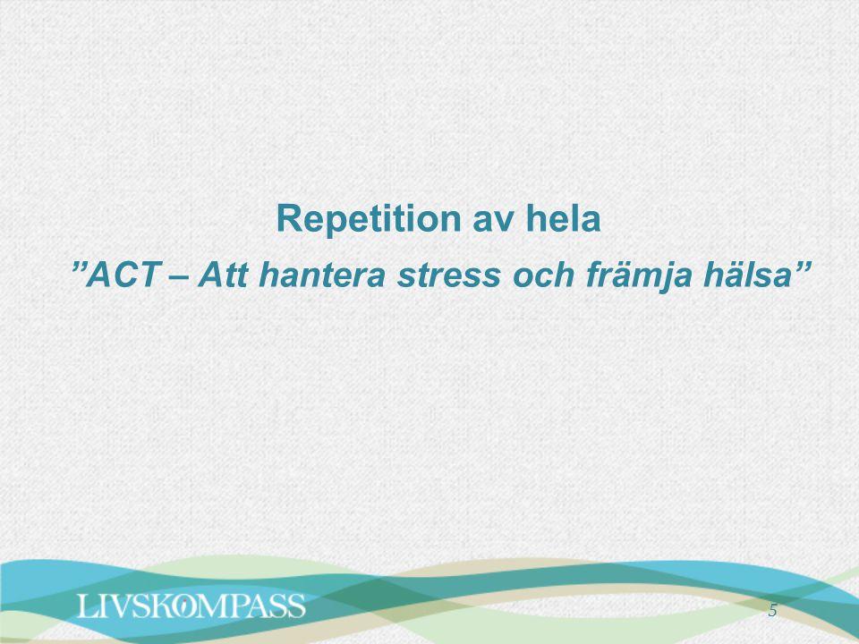 Repetition av hela ACT – Att hantera stress och främja hälsa