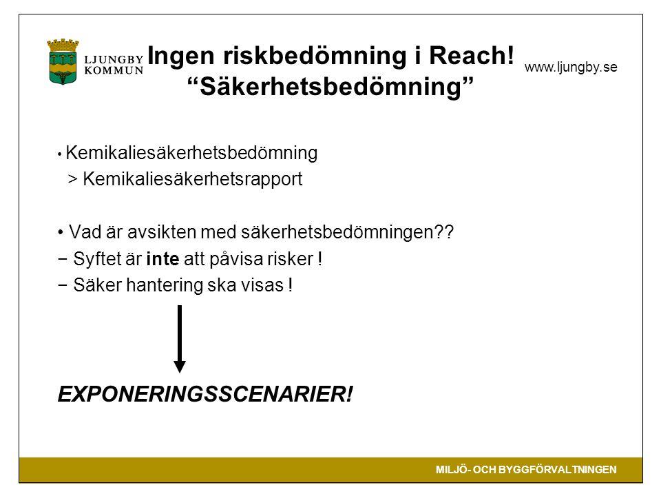 Ingen riskbedömning i Reach! Säkerhetsbedömning