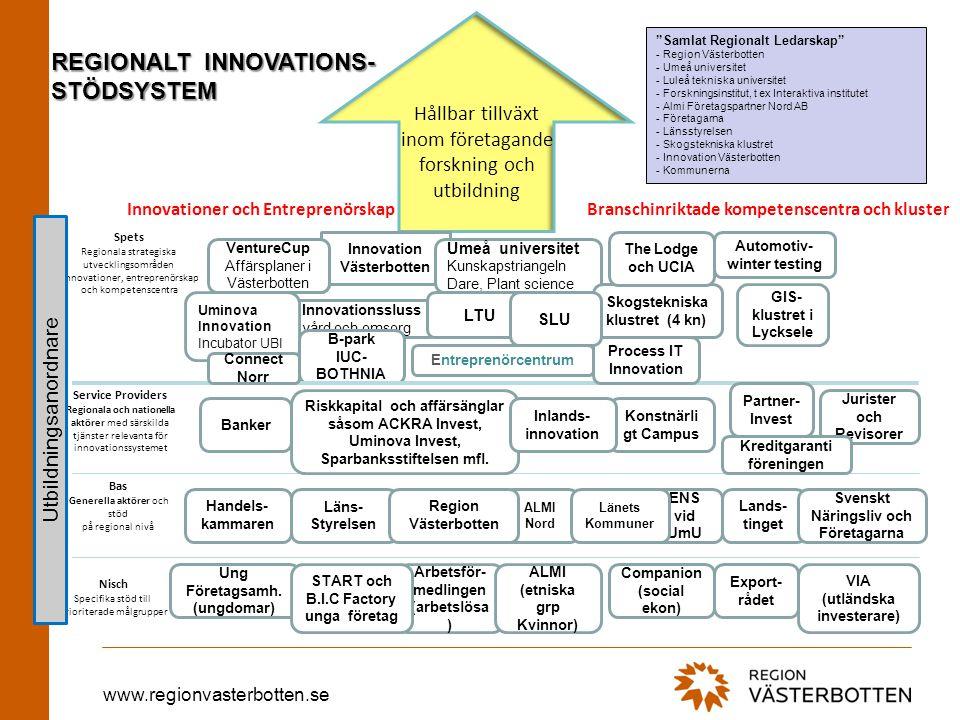 REGIONALT INNOVATIONS- STÖDSYSTEM