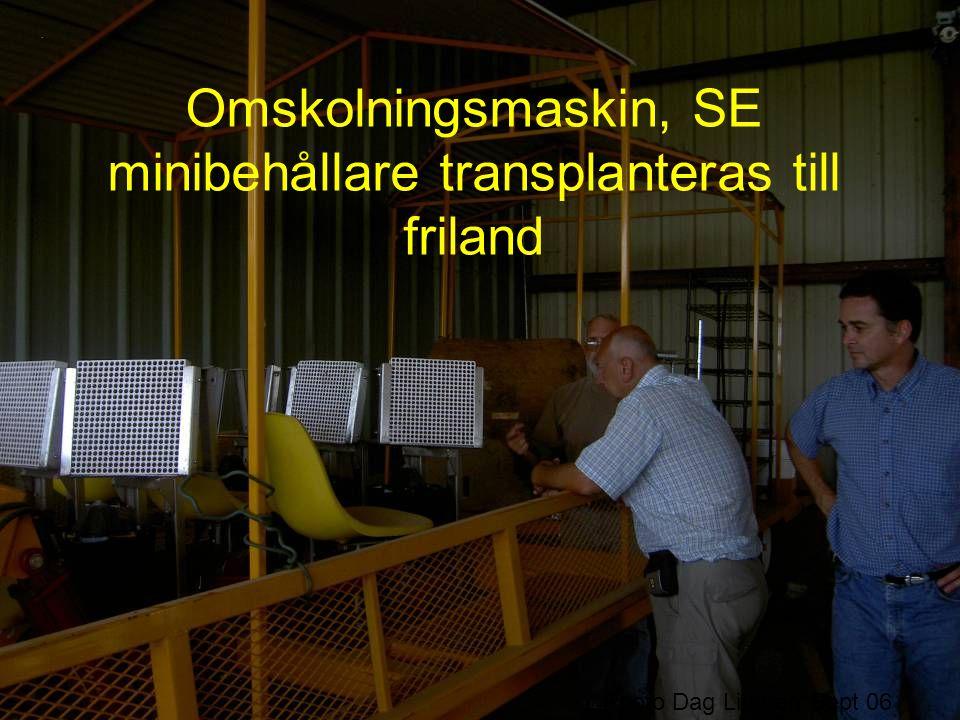 Omskolningsmaskin, SE minibehållare transplanteras till friland