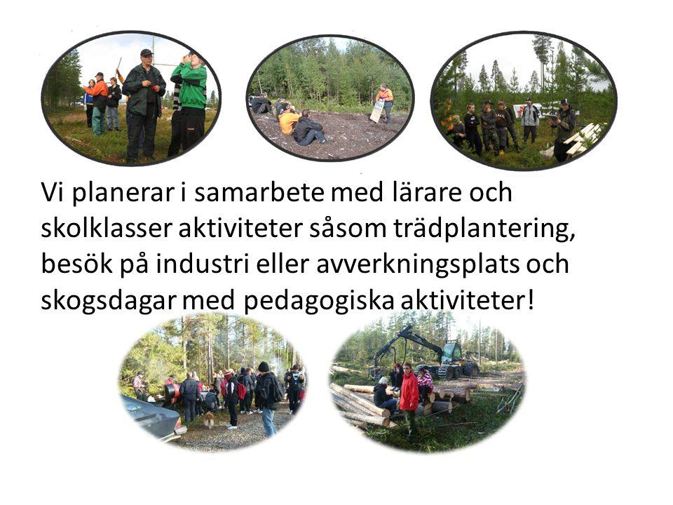 Vi planerar i samarbete med lärare och skolklasser aktiviteter såsom trädplantering, besök på industri eller avverkningsplats och skogsdagar med pedagogiska aktiviteter!