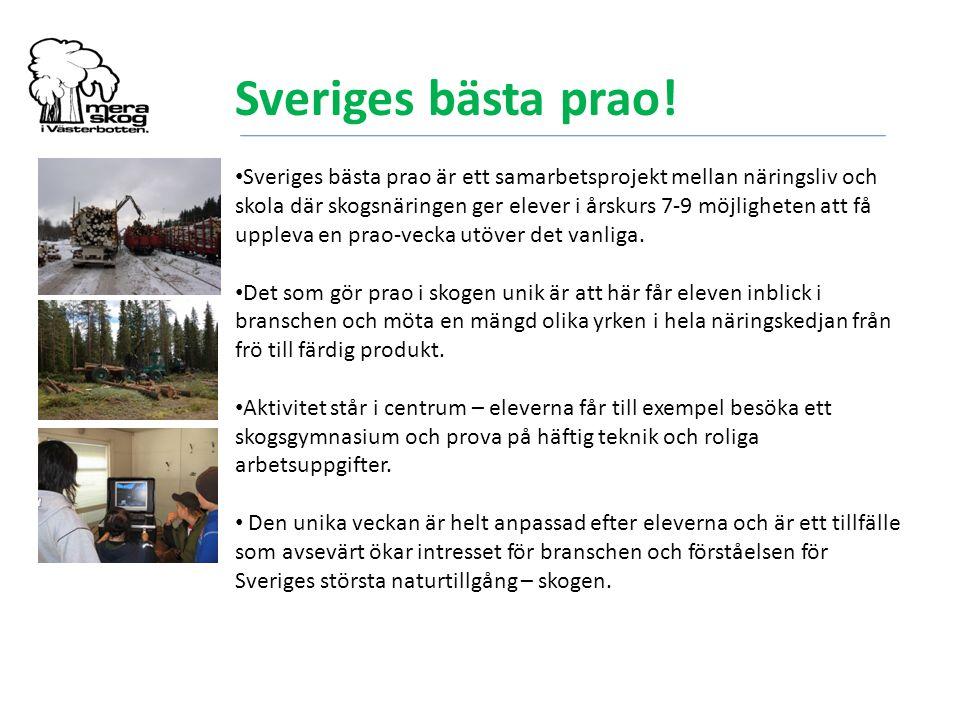 Sveriges bästa prao!